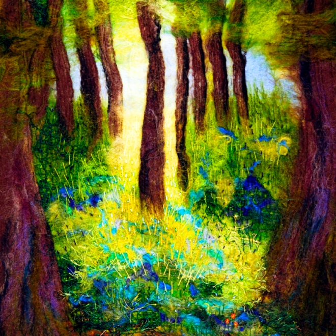 bluebell woods 800px v2